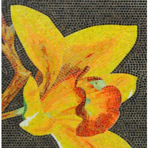 Orchid Mosaic 7