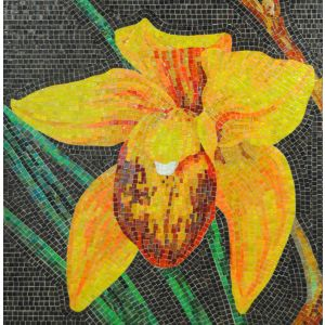 Orchid Mosaic 5
