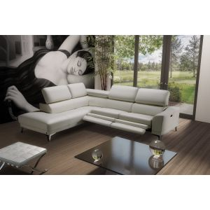Turner Leather Sectional Sofa