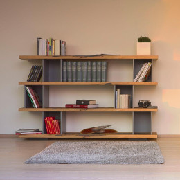 Bookcases + Shelves